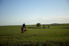 Kowboje iść do domu po ciężki dzień pracy zdjęcia royalty free