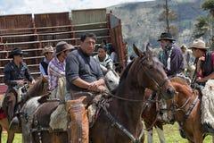 Kowboje zbiera w rodeo pierścionku w Ekwador Obraz Royalty Free