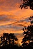 Kowbojscy nieba z sylwetką Obrazy Stock
