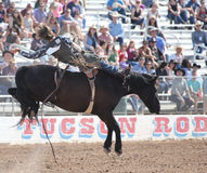 Kowbojska jazda bronco rodeo zdjęcia stock