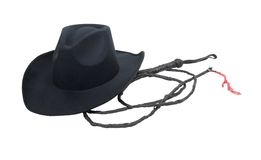 kowbojskiego kapeluszu bat obraz stock
