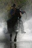 kowboju 2 Zdjęcie Stock