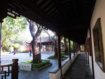 Kowloon огородил парк города Стоковое Фото