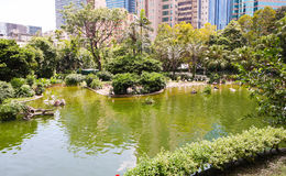 Kowloon park, Hong Kong Obraz Royalty Free