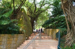 Kowloon park in the Hong Kong Stock Image
