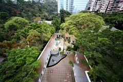 Kowloon parkerar i Hong Kong Arkivbild