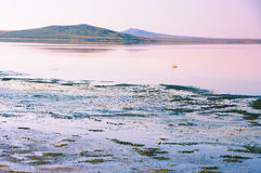 Koyashskoye salt lake Royalty Free Stock Photos
