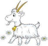 koza royalty ilustracja