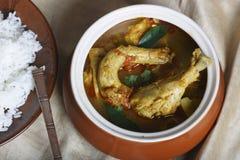 Kozhambu is a spicy non-veg gravy from Tamilnadu. Stock Image