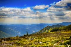 Kozi hrbety- Krkonose park narodowy w republika czech Zdjęcia Stock