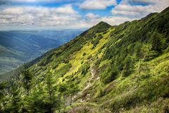 Kozi hrbety- Krkonose park narodowy w republika czech Fotografia Royalty Free