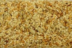 Kozinaki gjorde från solrosfrö, muttrar, sesamfrö i en sockersirap som en matbakgrund eller textur Arkivbild