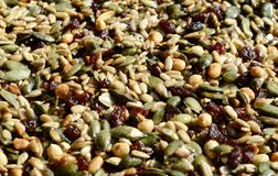 Kozinaki or Nuts and honey bar,Georgian traditional holiday food Royalty Free Stock Photography