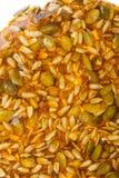 Kozinaki zrobił od słonecznikowych ziaren i dyniowych ziaren Obraz Royalty Free