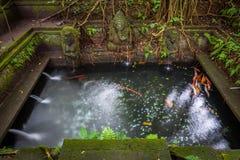 Kąpanie basen w Świętej wiosny świątyni, Święty Małpi Lasowy sanktuarium, Ubud, Bali Zdjęcia Stock