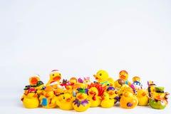 Kąpielowy kaczki om bielu tło Obraz Royalty Free