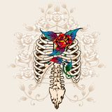 Kręgosłup róże i kości