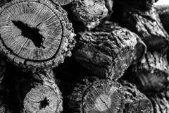 Kräftiger Holzstoß lizenzfreie stockbilder