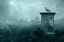 Krähe auf einem Grabstein Stockbild
