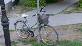 Krähe gehockt auf Fahrradvogel Stockfotografie