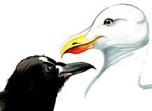 Krähe und Seemöwe Stockfoto