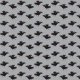 Krähen fliegen. Stockbilder