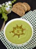 Kräm av broccoli och spenatsoppa Arkivbild