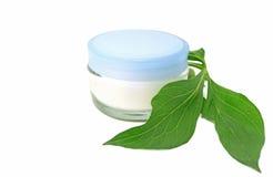 Kräm- bio naturlig skönhetsmedel för hudomsorg royaltyfria foton
