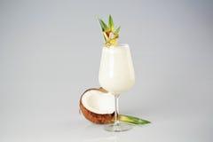 Kräm- coctail för kokosnöt Royaltyfri Foto