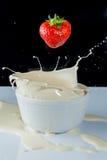 kräm- färgstänkjordgubbe Royaltyfri Fotografi