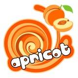 kräm- is för aprikos vektor illustrationer