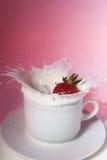 kräm- jordgubbe Royaltyfri Bild