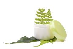kräm- leaf för cosmetic Arkivfoto