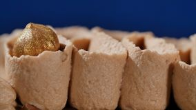 kräm- muttrar för cake Chokladkaka med muttrar och chokladchiper Chokladkaramellmuffin med muttrar och Arkivfoton