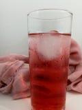 Kräm sodavatten, is, flöte, apelsin, coctail, drink, creamsicle, sött, glass som är kall, dryck, uppfriskning, fruktsaft, nytt so Royaltyfri Fotografi