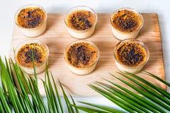Kräm som var brulee på trämagasinet, dekorerade med palmblad Kräm- efterrätt för traditionell fransk vanilj med caramelised socke royaltyfria bilder