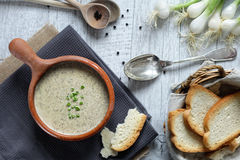 Kräm- soppa för champinjon Arkivfoto