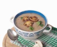 Kräm- soppa för champinjon royaltyfri bild
