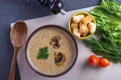 Kräm- soppa för champinjon i en brun platta på tabellen Vegetarisk traditionell maträtt för sund höst arkivfoton