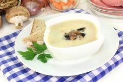 Kräm- soppa för kalvkött arkivfoton