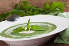 Kräm- soppa för nässla Royaltyfria Foton