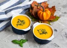 Kräm- soppa för pumpa med frö Autumn Concept Healthy Vegetarian Food arkivfoton