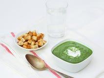 Kräm- soppa för spenat Arkivbilder