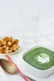 Kräm- soppa för spenat Royaltyfri Bild