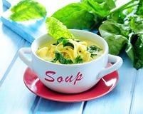 Kräm- soppa för spenat med nudeln fotografering för bildbyråer