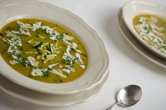 Kräm- soppa för zucchini som och för morot garneras med den klippta zucchinin, crea Fotografering för Bildbyråer