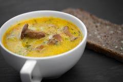 Kräm- soppa med champinjonkantareller och solrosbröd svärtar Royaltyfri Bild