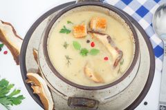 Kräm-soppa med den torkade soppchampinjonen Arkivbilder