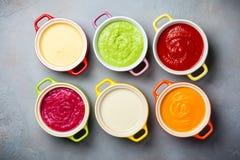Kräm- soppor för grönsak Royaltyfria Bilder