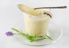 Kräm- soup Fotografering för Bildbyråer